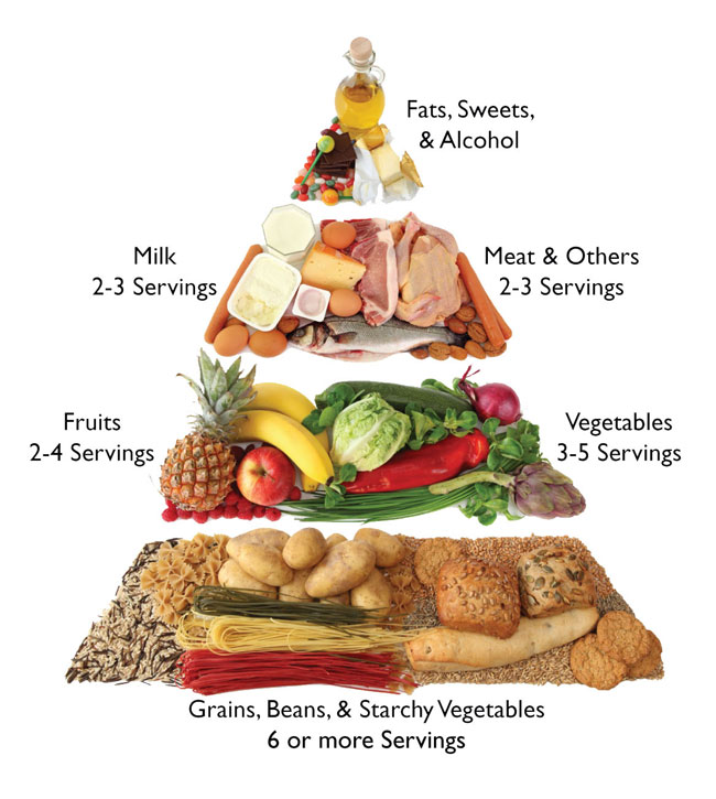 Some Ideas In Order To Help You Having The Best Portable: Have A Healthy Diet And Manage Your Diabetic Meal Plans